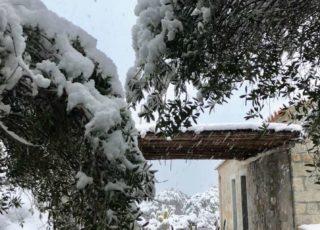 borgo_lianti_porto_pollo_sardegna_casetta_1_6