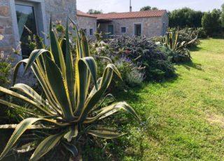 borgo_lianti_porto_pollo_sardegna_casetta_4_18